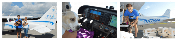 Epic Flight Academy Pilots N Paws