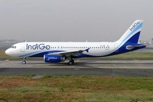 IndiGo Hiring Requirements