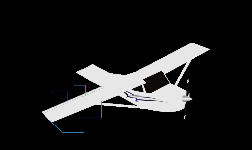 Airplane Wings C172